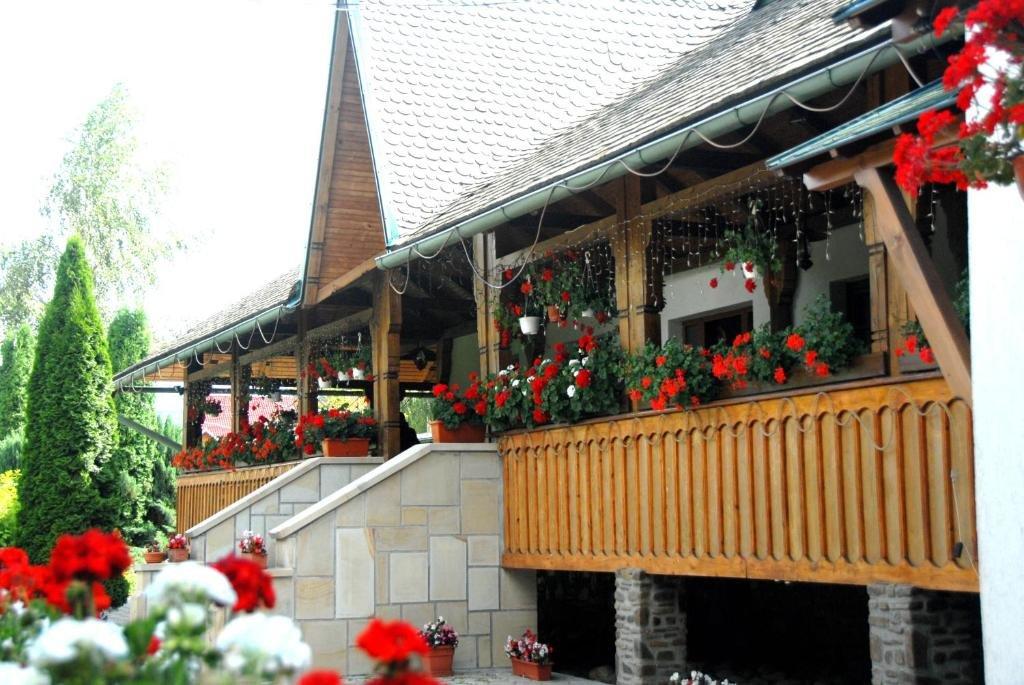 Complex Turistic Casa Elena (voronet)