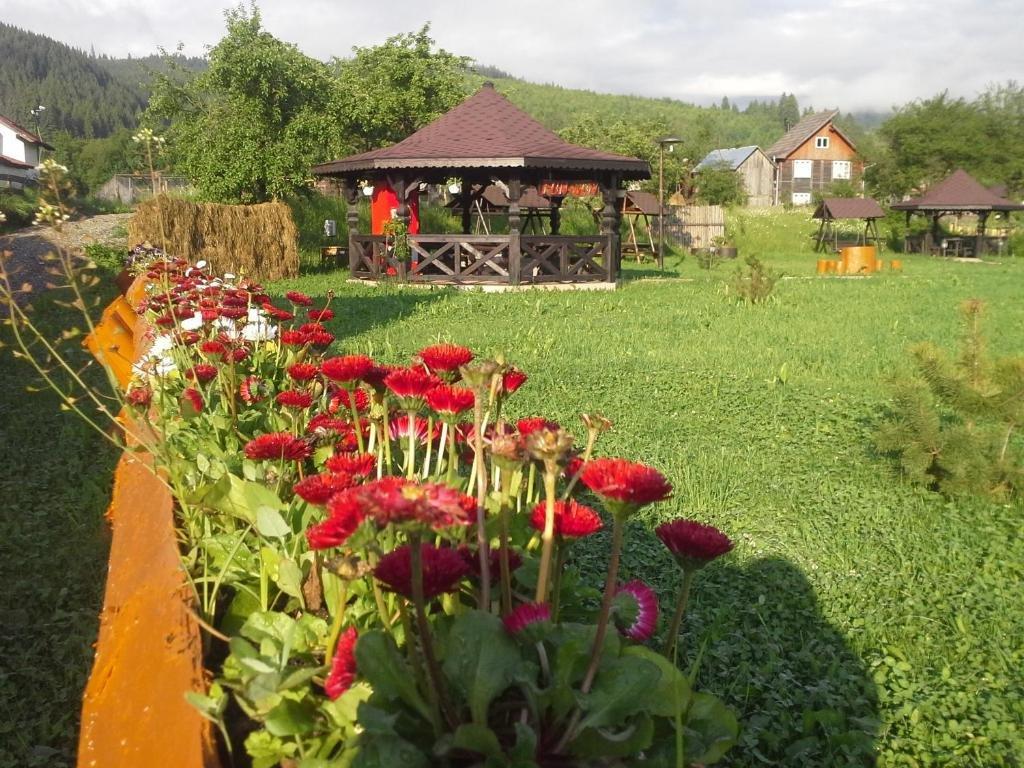 La Bucovineanca (vama)
