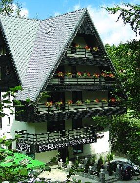 SMART HOTEL - Sinaia